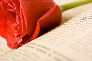 rose on the book